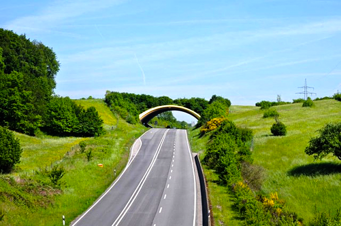 Экологический тоннель в Германии