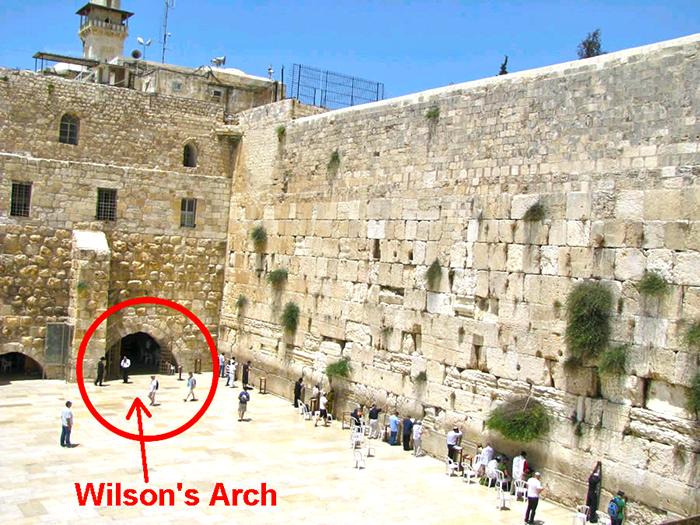 Расположение арки уильсона