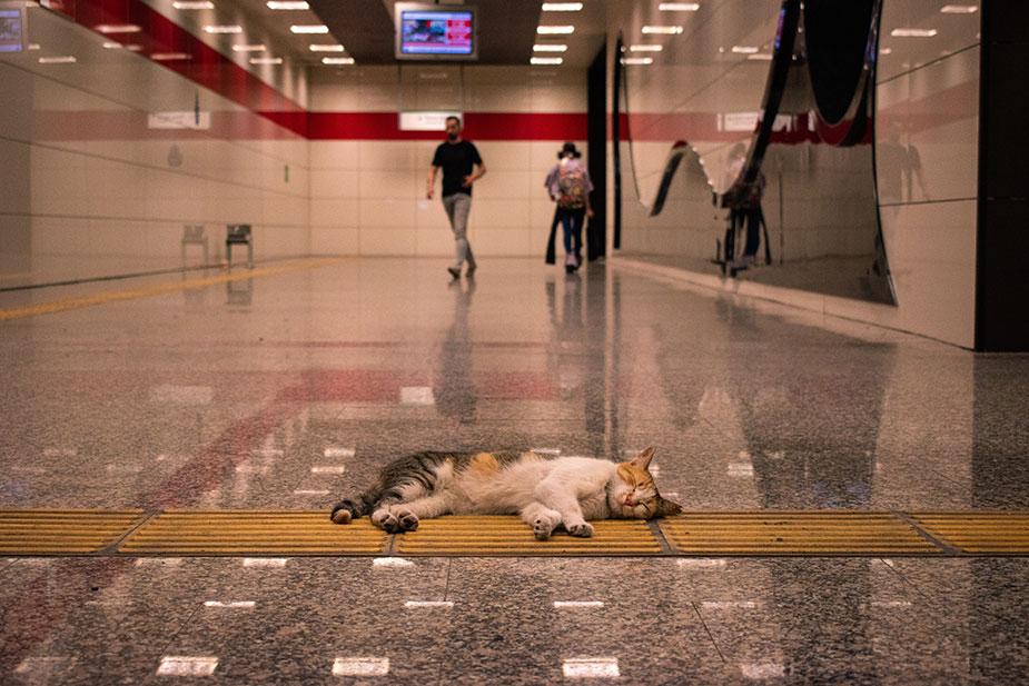 Vezneciler metro - Istanbul
